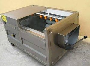 Automatic Brush Type Potato Washing Peeling Machine for Zambia Customer