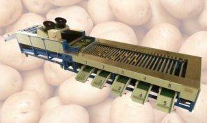 full-automatic-potato-dry-cleaning-and-grader-line