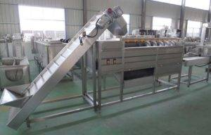 Full Automatic 800kgh Potato Washing Peeling Selecting and Cutting Line