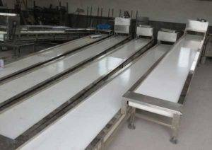 Potato-Selecting-Conveyor