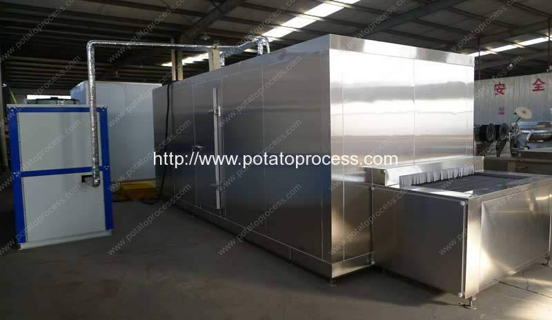 100kgh-Frozen-French-Fries-IQF-Machine-Manufacture