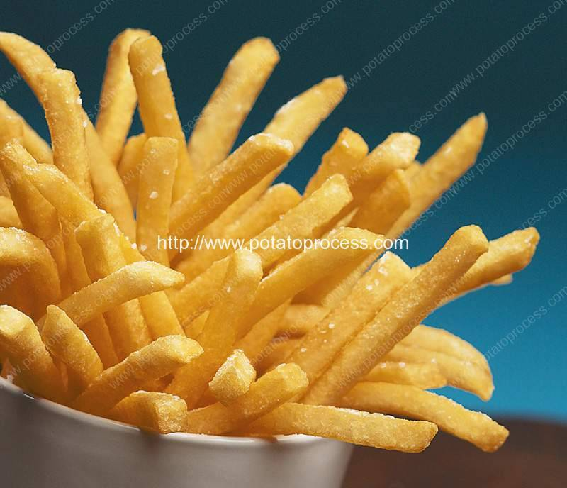 Introduction of French Fries Company in America