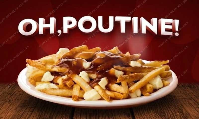 Poutine-Canadian-French-Fries-Making-Machine