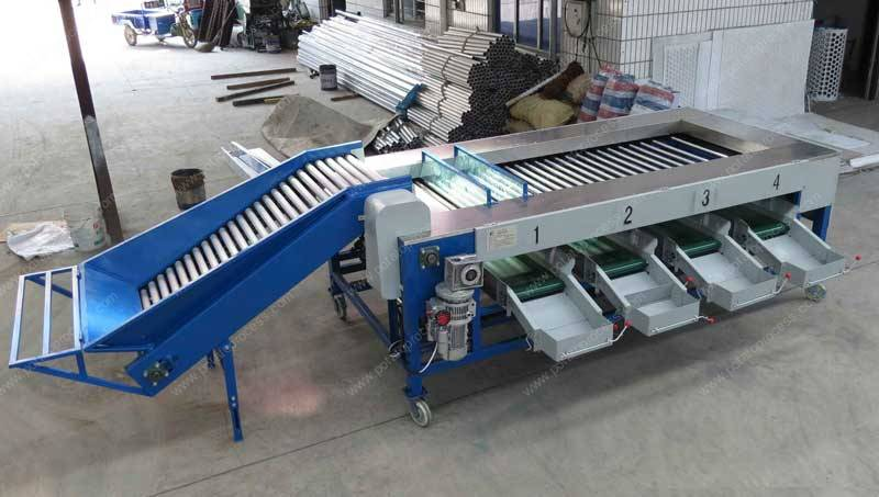 Automatic Potato Size Sorting Machine for Sale