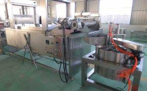 Full-Automatic-French-Fries-Frying-Machine-and-Oil-Removing-Machine-Manufacture-and-Supplier-Romiter
