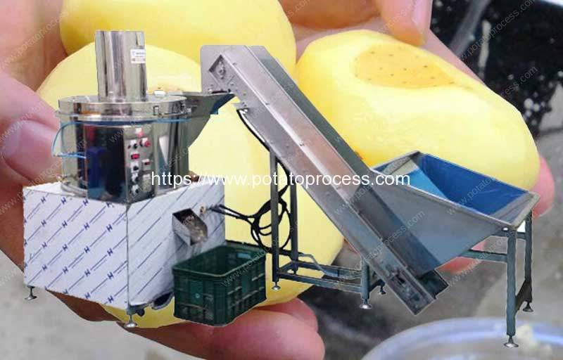 300kg-Per-Hour-Potato-Knife-Peeling-Machine-for-Sale
