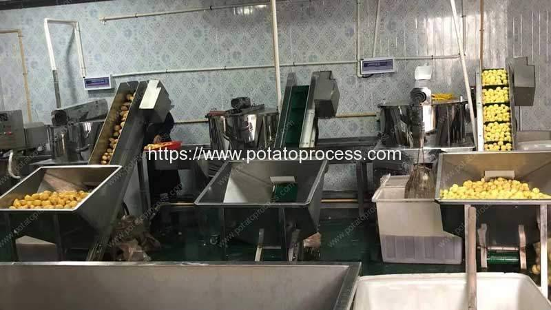 Potato-Knife-Peeling-Machine-in-Working