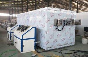 Automatic 100kgh Frozen French Fries Instant Freezer for Botswana Customer