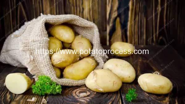 How To Store Potatoes? 5 Ways To Increase The Shelf Life Of This Versatile Veggie