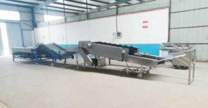 Automatic-Potato-Dry-Cleaning-and-Size-Sorting-Plant