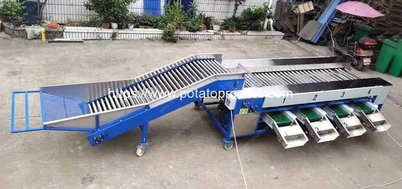 Automatic-Potato-Dry-Cleaning-and-Size-Sorting-Plant-Delivery-to-Mongolia-Customer