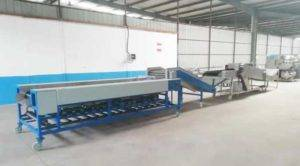Automatic Potato Dry Cleaning and Size Sorting Plant Delivery to Mongolia Customer