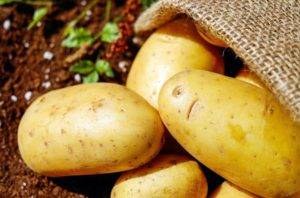 Potato Uses and Potato Processing Machine Review in 2020