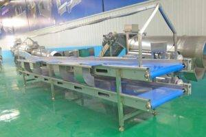 Automatic-Double-Layer-Potato-Selection-Conveyor-with-Lamp-Frame