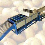 Ligne automatique de nettoyage et de nivellement des pommes de terre