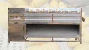 Screw Feeding Type Potato Washing Peeling Machine