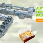 Full Automatic 400KGH Frozen French Fries Production Line