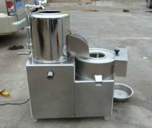 Small Potato Washing Peeling Cutting Machine for Cameroon Customer