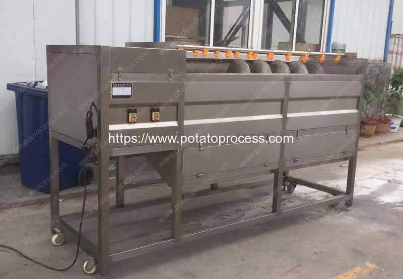 Screw-Feeding-Type-Sweet-Potato-Washing-Peeling-Machine-for-Asia-Customer
